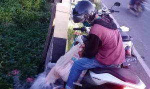 Pria di Takalar kedapatan membawa Miras (Foto:Ist)